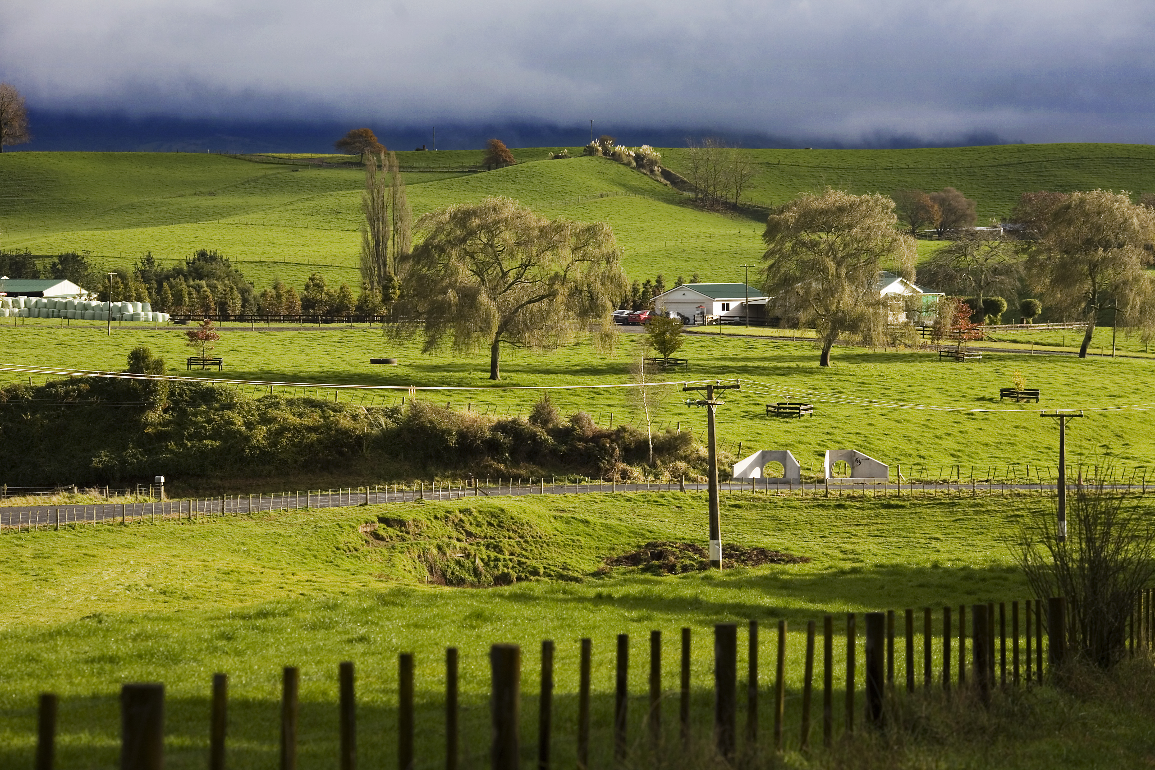 how farming will become more regenerative in new zealand